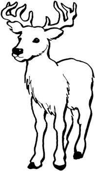 coloriage à dessiner cerf pere noel