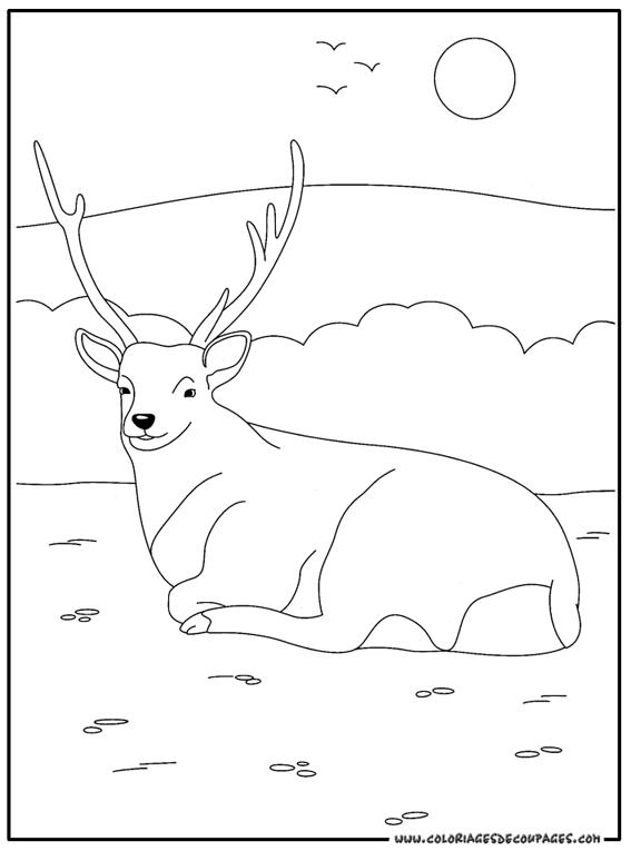 coloriage à dessiner cerf volant chinois