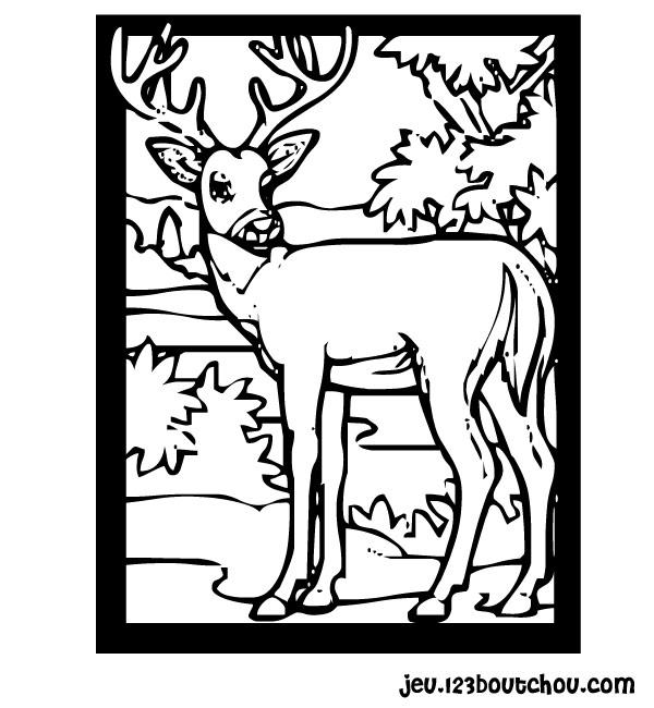 coloriage à dessiner de cerf en ligne