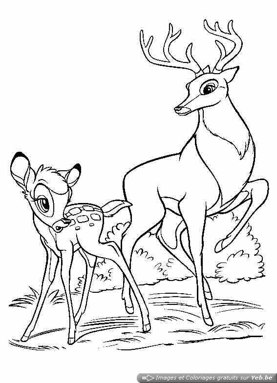 coloriage de cerf et sanglier