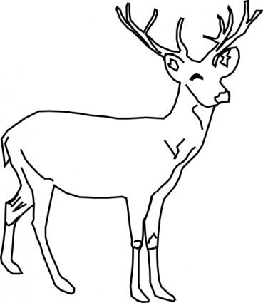 dessin à colorier lucane cerf volant