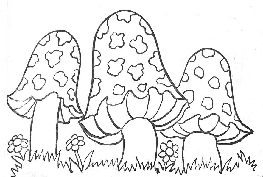 coloriage à dessiner champignon