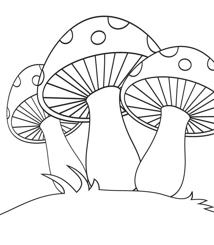 dessin à colorier dessin champignon