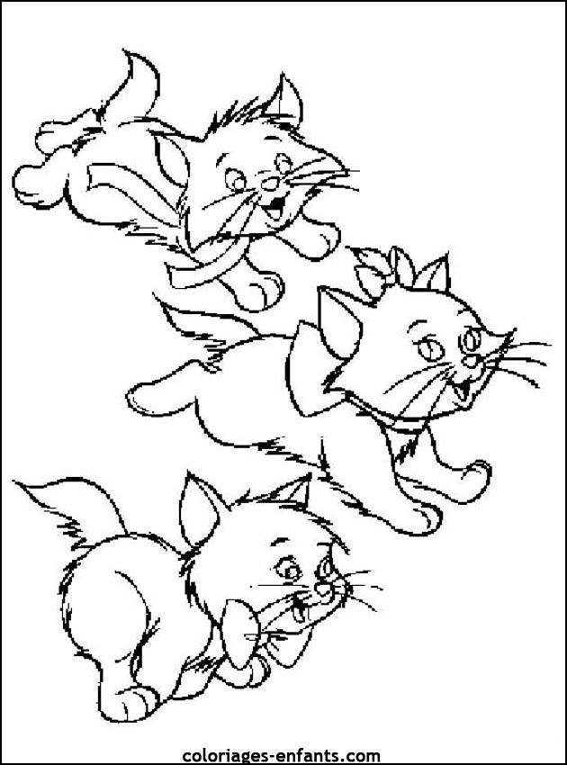 Coloriage chat mandala - Dessin chat noir ...