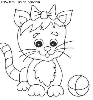 coloriage chat blanc