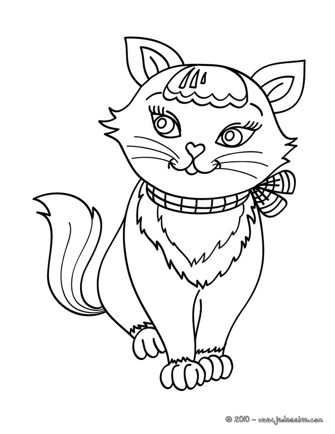 coloriage chat rose petshop