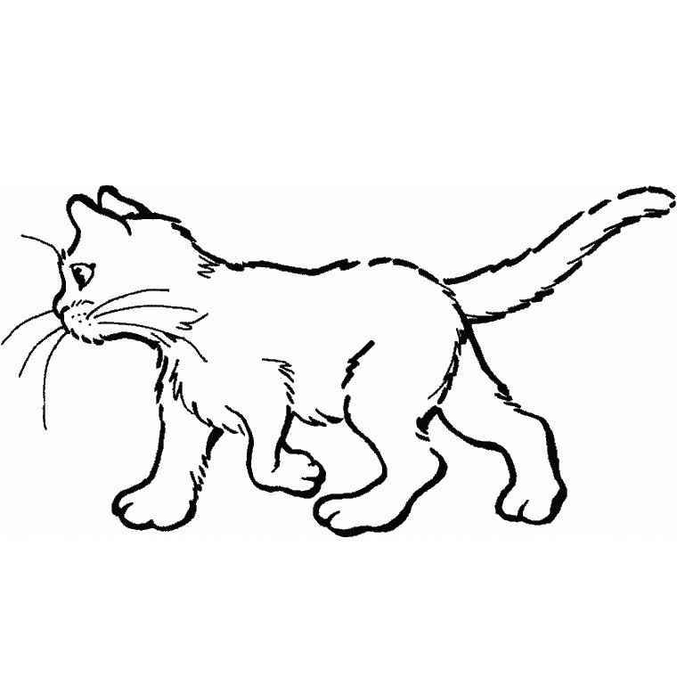 Coloriage A Imprimer Un Chat.131 Dessins De Coloriage Chat A Imprimer