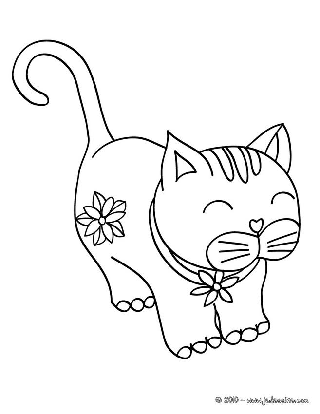 coloriage chat et rat