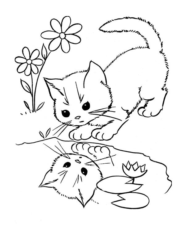 Dessin colorier de chaton - Dessin a colorier chat chaton ...