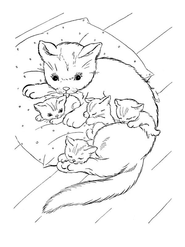 coloriage à dessiner chaton trop mignon a imprimer