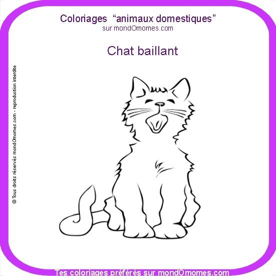 dessin à colorier de chaton
