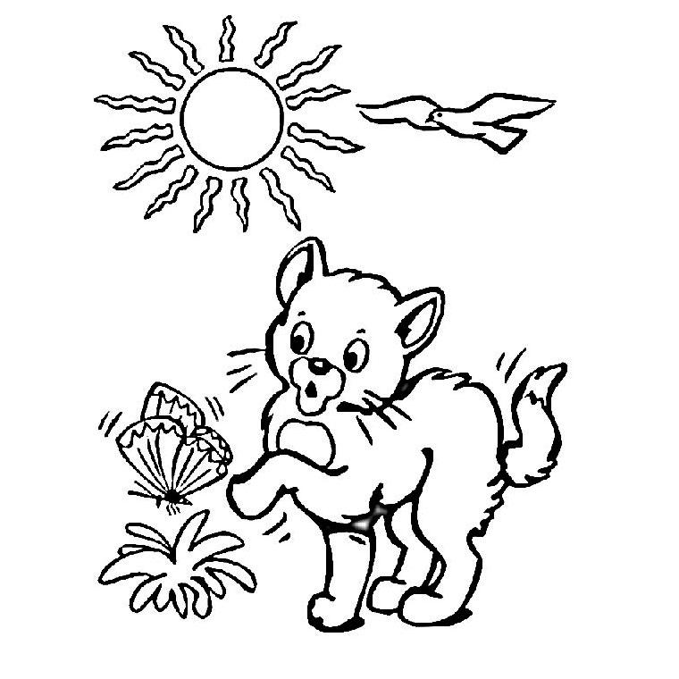 coloriage à dessiner chaton à imprimer