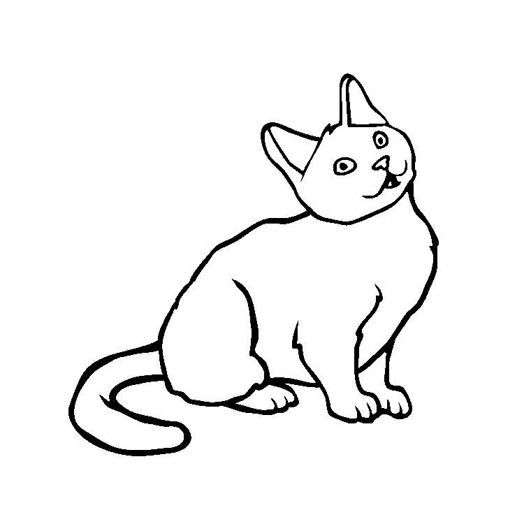 coloriage à dessiner chaton qui joue