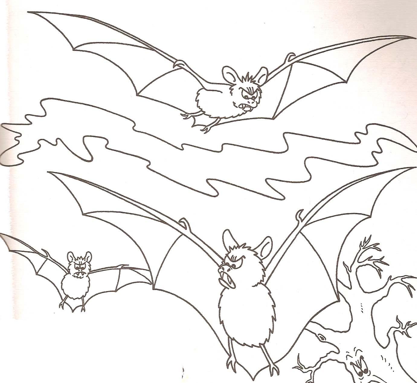dessin chauve souris en ligne