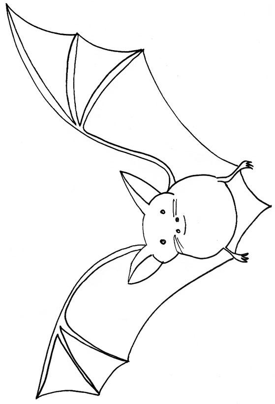 Dessin colorier d 39 halloween chauve souris - Chauve souris a imprimer ...