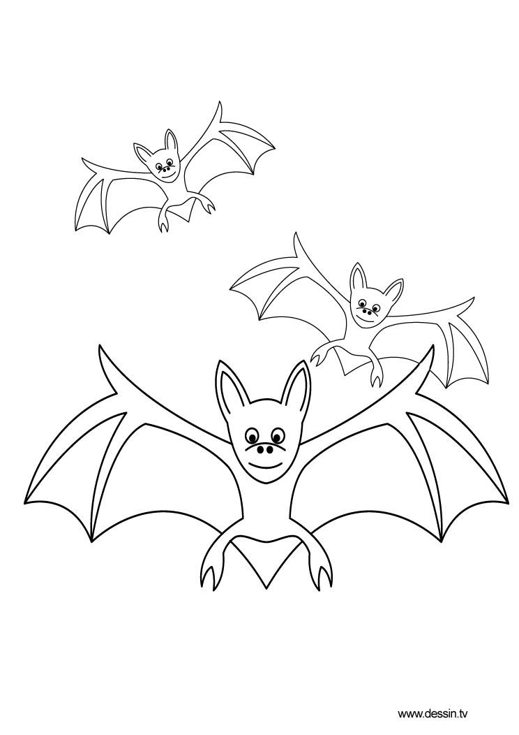 dessin à colorier chauve souris gratuit
