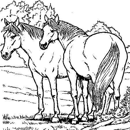 20 dessins de coloriage cheval en ligne imprimer - Dessin a colorier cheval ...