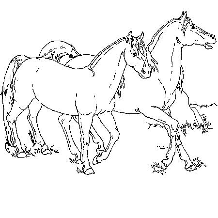 20 dessins de coloriage cheval en ligne imprimer - Coloriage de chevaux ...