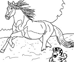 20 dessins de coloriage cheval grand galop imprimer - Coloriage cheval sauvage ...