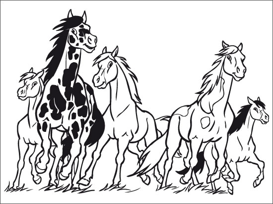 coloriage cheval et poulain a imprimer