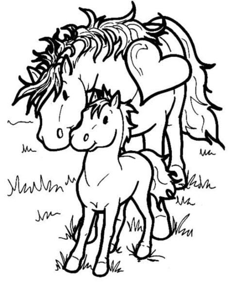 coloriage cheval et vache