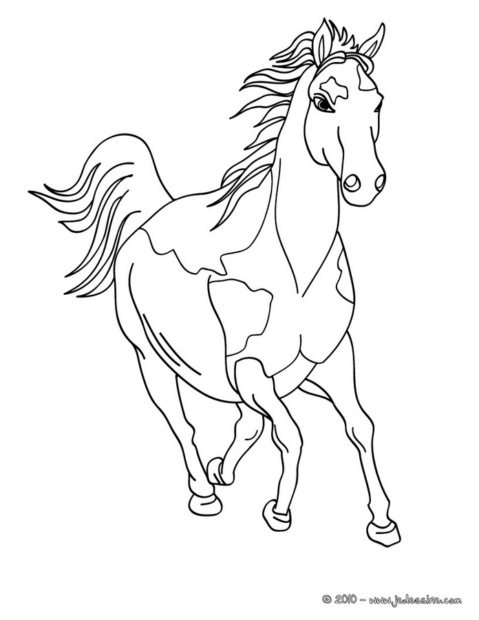 coloriage cheval en ligne