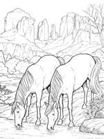 coloriage a cheval imprimer