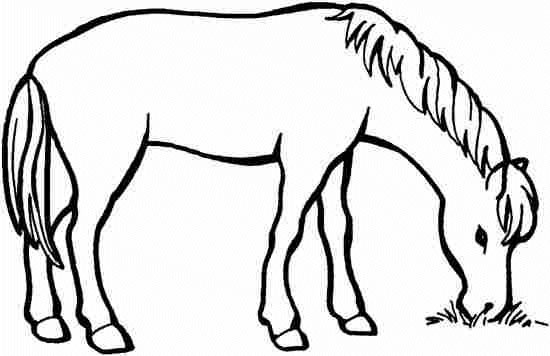 coloriage cheval maternelle