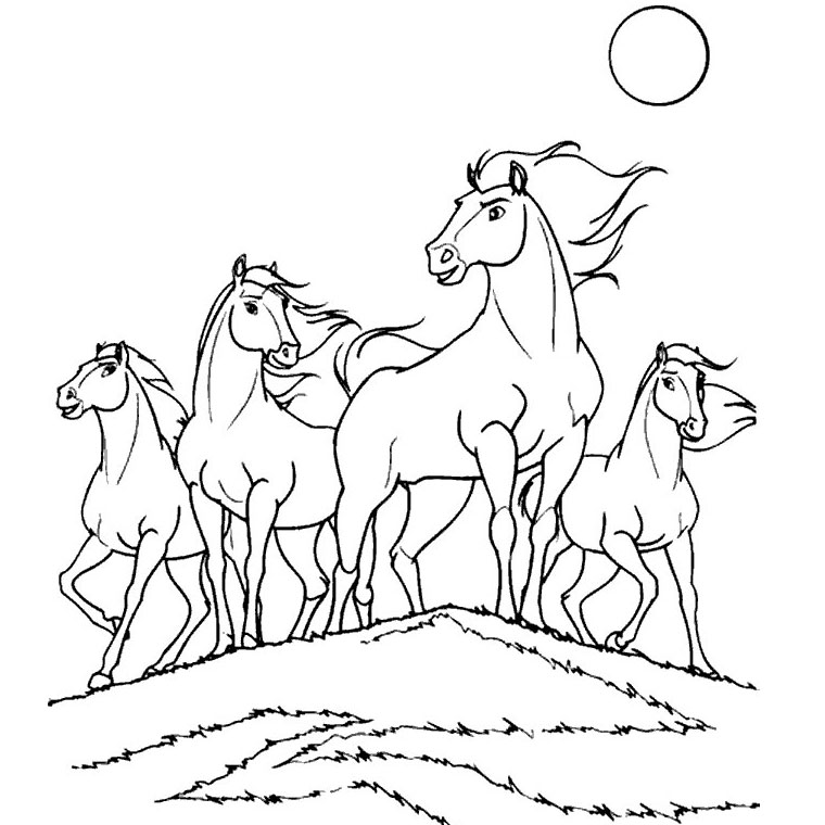coloriage cheval adulte