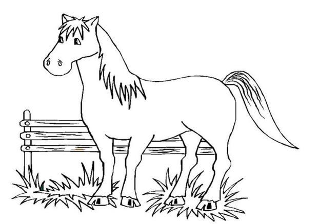 coloriage cheval pegase