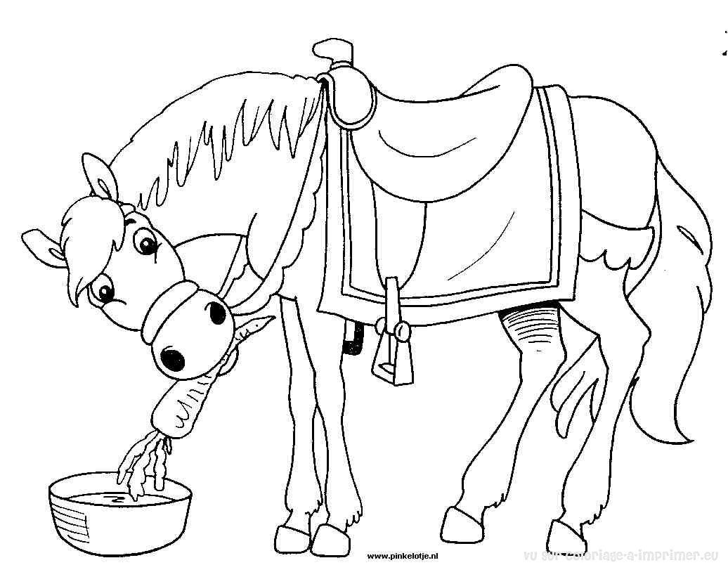 coloriage cheval poulain imprimer