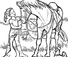 coloriage cheval jument et poulain