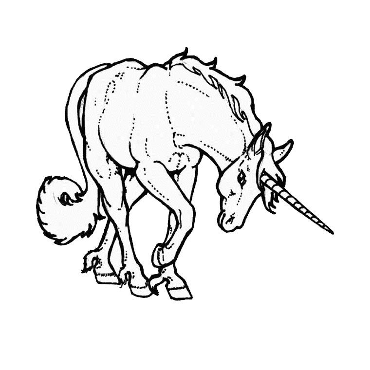 coloriage cheval avec caleche