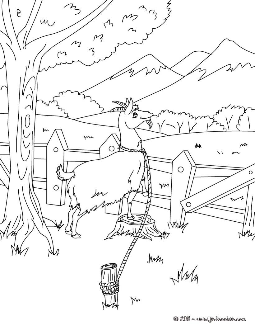20 dessins de coloriage chevre et loup imprimer - Coloriage magique loup ...