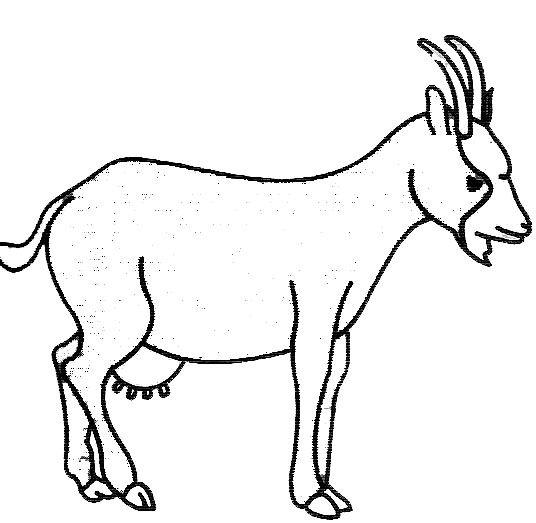 dessin � colorier la chèvre de monsieur seguin