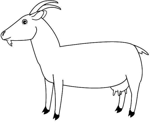 coloriage chèvre imprimer