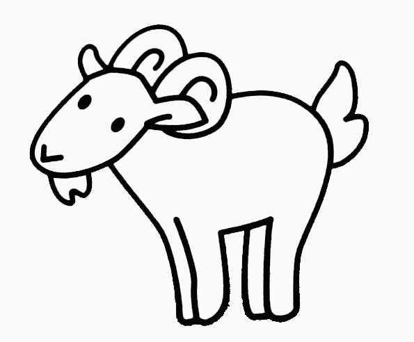 dessin à colorier animaux chèvre