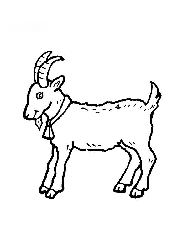 dessin à colorier la chèvre et les biquets