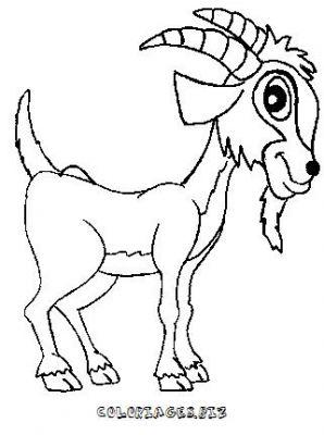 dessin chèvre de mr seguin