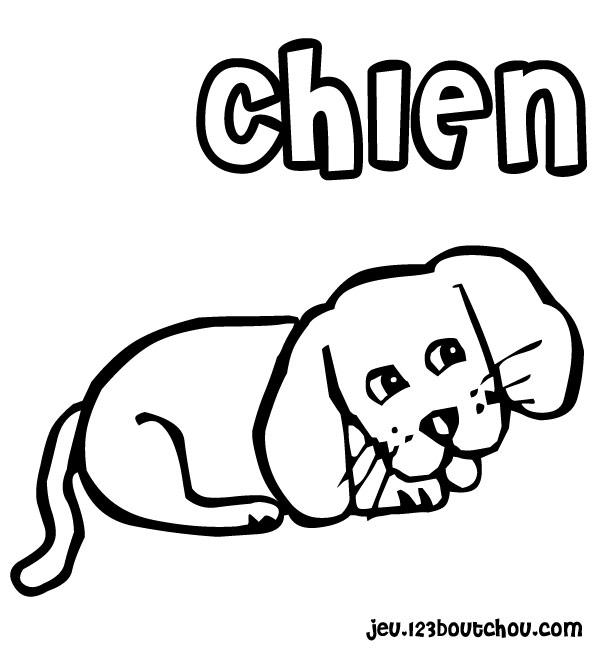 20 dessins de coloriage chien imprimer gratuit imprimer - Coloriage de chien boxer ...