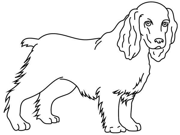 19 dessins de coloriage Chien à Imprimer à imprimer