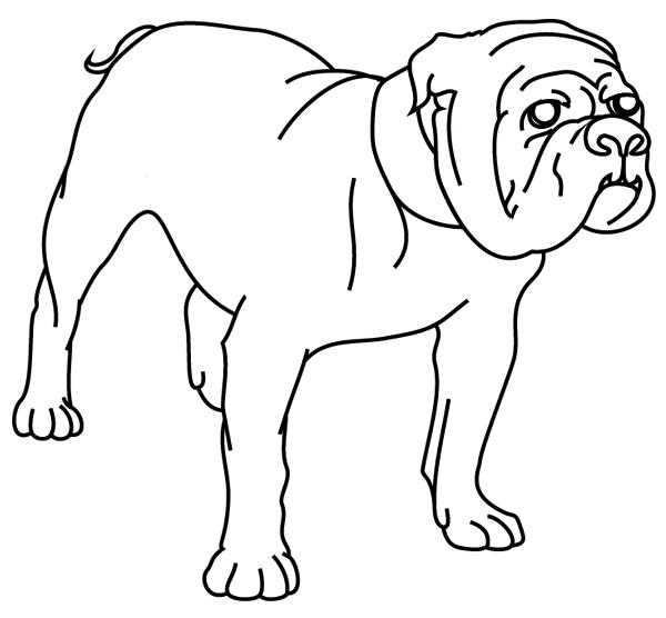19 dessins de coloriage chien boxer imprimer - Coloriage de chien boxer ...