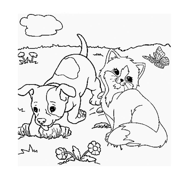 19 dessins de coloriage chien et chat imprimer - Babouin et belette ...