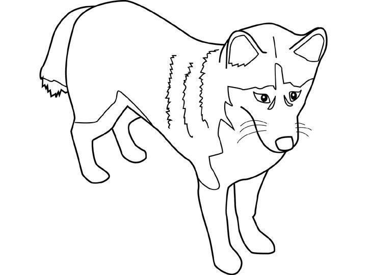 coloriage chien gratuit