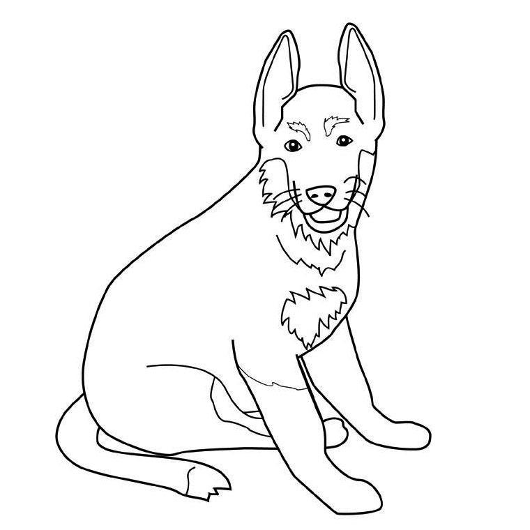 Coloriage chien avec laisse - Berger allemand gratuit ...