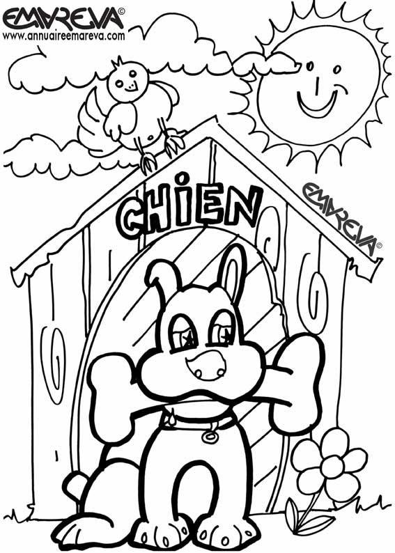 Coloriage chien et chat - Chiot a colorier ...