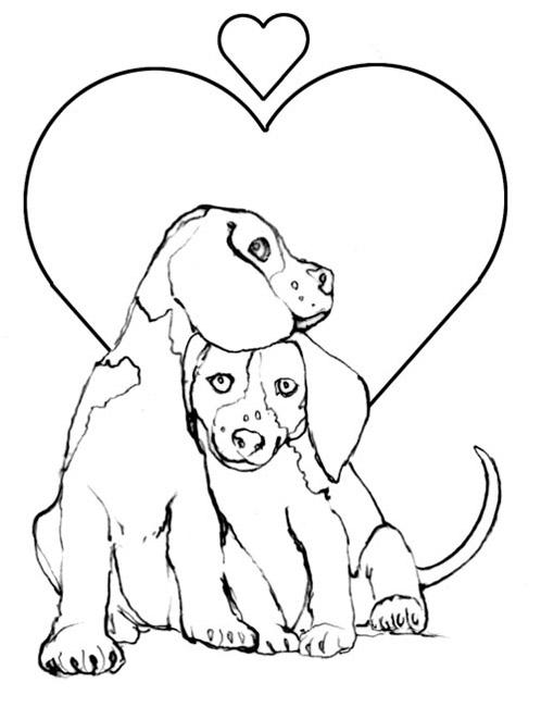 coloriage chien froussard