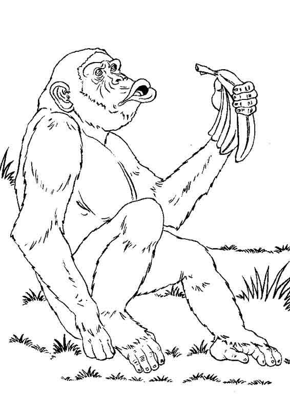 coloriage à dessiner les chimpanzés de l'espace