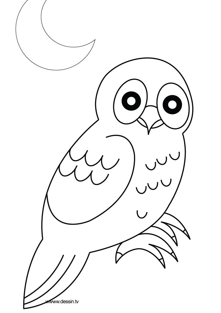 dessin à colorier chouette rigolote
