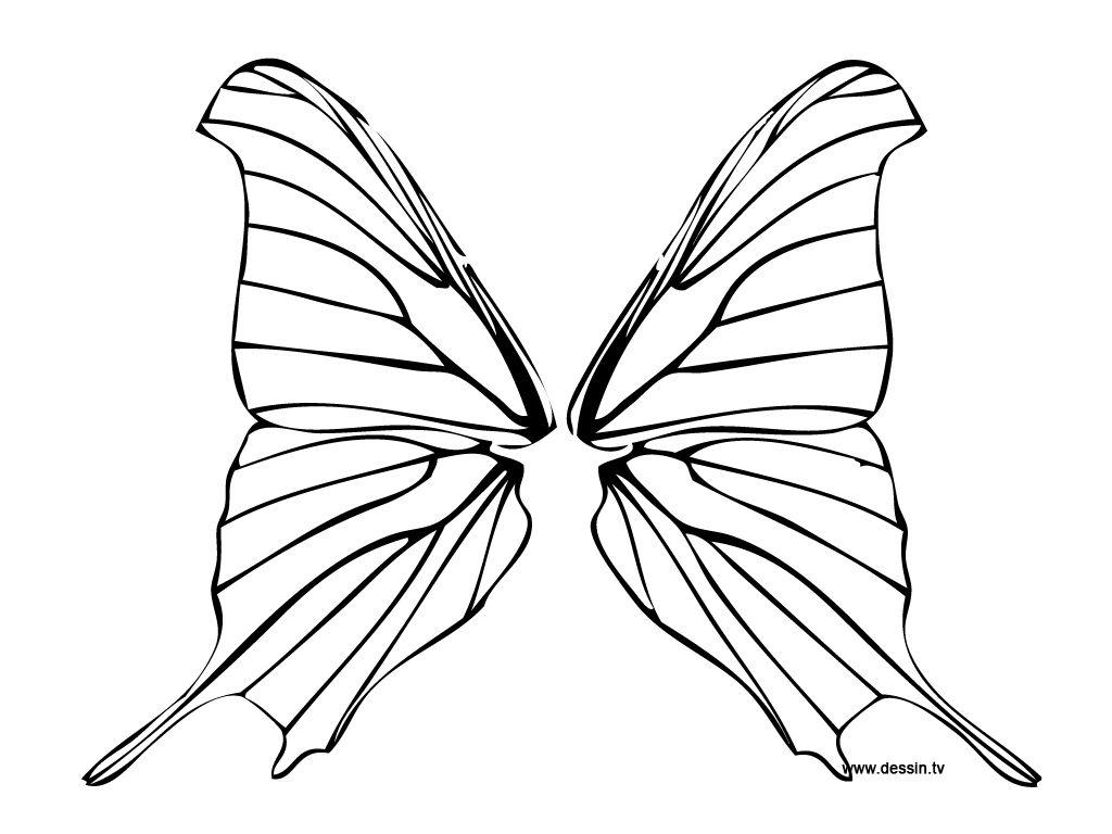 92 dessins de coloriage coccinelle et papillon à imprimer